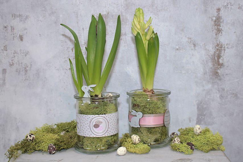 Frühlingsdeko frühlingsdeko im glas die perfekte tischdeko vbs hobby